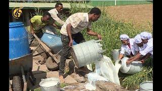 ETHIOPIA: በተቋማት ውዝግብ ምክንያት በየቀኑ 3 ሺህ ሊትር ወተት እየተደፋ ነው - FANA TV #Fana