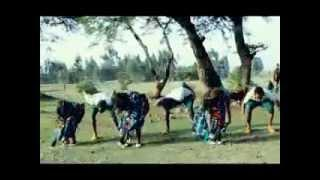 Zema  New! Traditional Amharic Music Video by Ziggy Tafesse