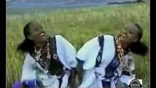 Traditional Amharic Music- Manalemosh Dibo- Wollo
