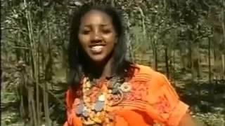 Traditional amharic Music Manalemosh Dibo Gonder