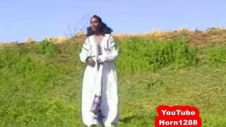 Ethiopian Traditional Music