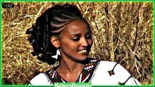 Ethiopian Music - Tigabu Chernet - ZewZew - (Official Music Video)