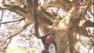 Traditional Amharic:Amsale Meteke - Abajalew